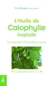 Huile_Calophylle