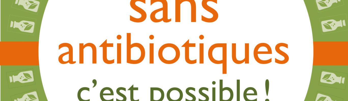 antibiotiques-remèdes naturels-plantes-huiles essentielles